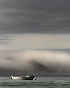 #8355_2016 - Vague de brume