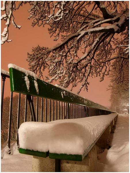 Le banc de la Treille, le plus long banc en bois du monde. <br /> 121m. - Genève - année 1767