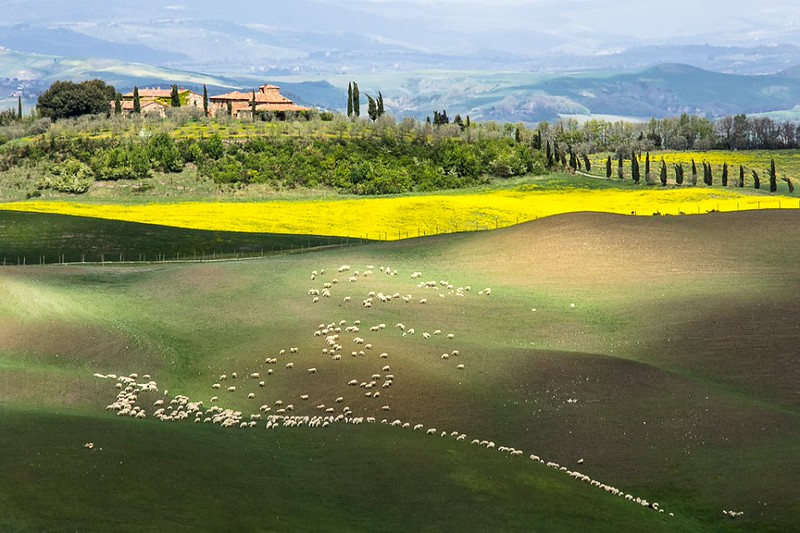Printemps en Toscane