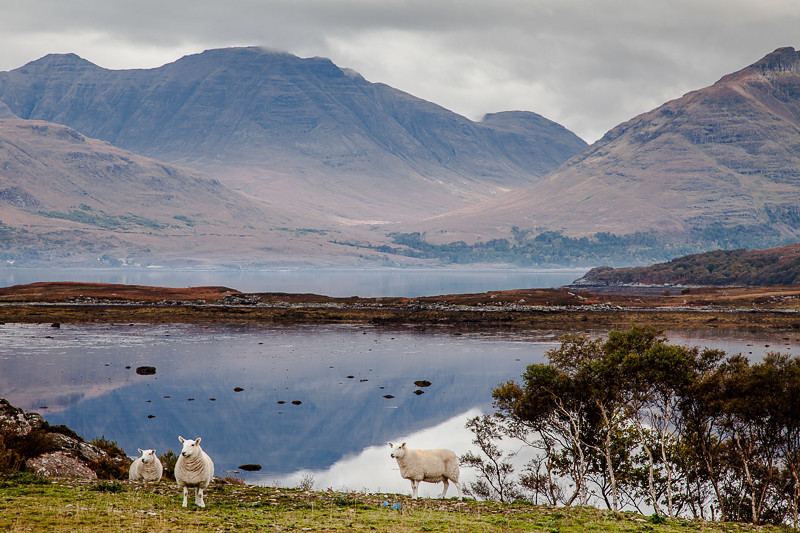 Highlands Landscape
