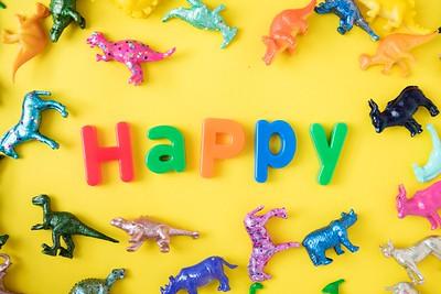 Happy Toys