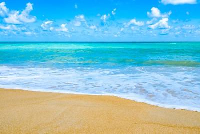 Beach & Sand I