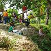 participantes del precumbre agrario
