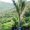 El sendero hasta Lomas Verdes