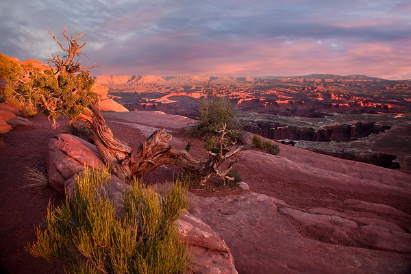 CANYONLANDS OVERVIEW