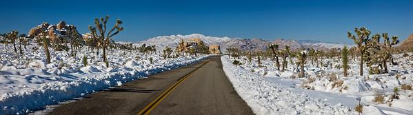 JOSHUA TREE NATIONAL PARK IN WINTER PANORAMA