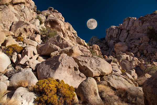 MOON OVER JOSHUA TREE NP