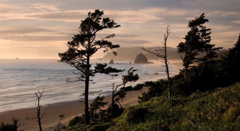 CANNON BEACH LANDSCAPE
