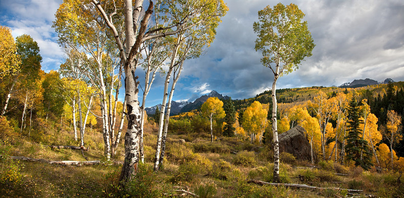 ASPEN MEADOW PANORAMA