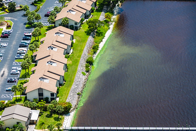 The algae bloom from Lake Okeechobee has grown since it was first measured in May. Environmentalists believe it now stretches more than 200 square miles. This algae bloom is in the St. Lucie Estuary on Friday, July 8, 2016. South Florida Water Management District says the aglae bloom has dissipated some, following efforts to minimize impacts from the Lake O discharges.