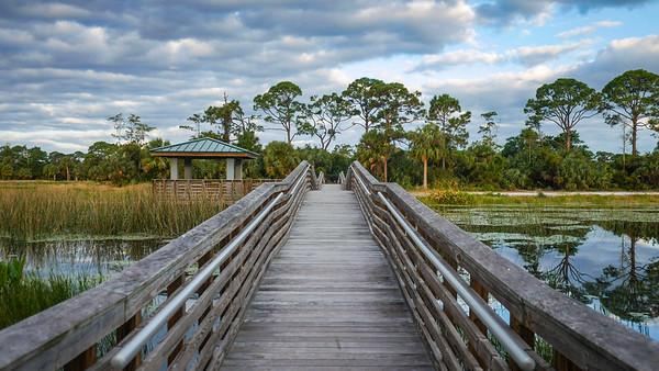 Winding Waters Natural Area (Joseph Forzano / The Palm Beach Post)