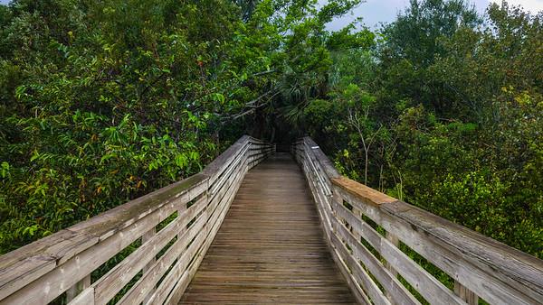 Green Cay Nature Preserve (Joseph Forzano / The Palm Beach Post)