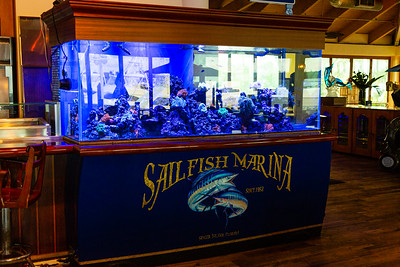 Sailfish Marina,  located at 98 Lake Dr, West Palm Beach, Florida on Friday, September 20, 2019.  [JOSEPH FORZANO/palmbeachpost.com]