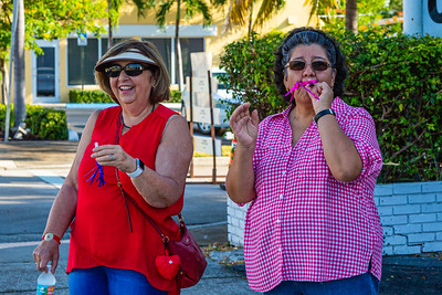 Spectators watch the parade go by on Dixie Highway during the 1st Annual Latin Quarter WPB 2019 Hispanic Heritage Month Parade, on Saturday, October 5, 2019. [JOSEPH FORZANO/palmbeachpost.com]