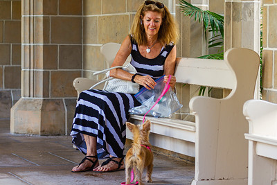 Linda Gumenick of Lake Worth and Mitzi await the start of the annual Blessing of the Animals  at The Church of Bethesda-by-the-Sea on Sunday, October 6, 2019. [JOSEPH FORZANO/palmbeachpost.com]