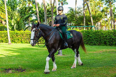 Palm Beach County Sheriff Deputy Mike Valenti sits atop  his Clydesdale Scooter at The Church of Bethesda-by-the-Sea in Palm Beach on Sunday, October 6, 2019. PBSO brought two horses to the annual Blessing of the Animals.  [JOSEPH FORZANO/palmbeachpost.com]