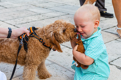 Andrew Heitman from West Palm Beach gets a kiss from Snicker before the annual Blessing of the Animals at The Church of Bethesda-by-the-Sea in Palm Beach on Sunday, October, 6, 2019. [JOSEPH FORZANO/palmbeachpost.com]