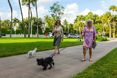 Brenda Horvath and her dog Logan and Sharon Selle and her dog Sophie arrive at The Church of Bethesda-by-the-Sea in Palm Beach for the annual Blessing of the Animals service on Sunday, October 6, 2019.  [JOSEPH FORZANO/palmbeachpost.com]