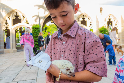 Jacob Gonzalez from West Palm Beach brought his hedgehog Prickles to the annual Blessing of the Animals at The Church of Bethesda-by-the-Sea in Palm Beach on Sunday, October 6, 2019.  [JOSEPH FORZANO/palmbeachpost.com]