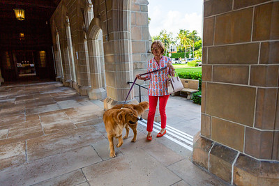A woman and her dog arrive at The Church of Bethesda-by-the-Sea in Palm Beach before the annual Blessing of the Animals service on Sunday, October 6, 2019. [JOSEPH FORZANO/palmbeachpost.com]