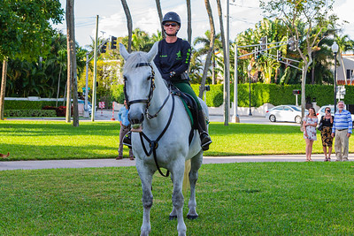 Palm Beach County Sheriff Deputy Audrey  Miranda sits atop her Percheron Bella at The Church of Bethesda-by-the-Sea in Palm Beach on Sunday, October 6, 2019. PBSO brought two horses to the annual Blessing of the Animals.  [JOSEPH FORZANO/palmbeachpost.com]