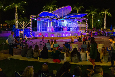 A crowd watches members of the Jupiter High School Choir perform holiday jingles at the Harbourside Place Amphitheater.  Harbourside Place in Jupiter held their annual Tree Lighting Ceremony on Saturday, November 23, 2019.  [JOSEPH FORZANO/palmbeachpost.com]