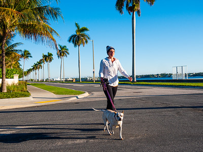 Stacy DeMars is dressed for the cold weather as she walks her dog PGC along S. Flagler Drive in West Palm Beach on Tuesday, December 3, 2019. [JOSEPH FORZANO/palmbeachpost.com]