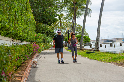 Mike Abeshouse and Marcy Cohen of Delray Beach walk their dog Pinot along the Lake Trail in Palm Beach, on Tuesday, March 24, 2020. The Town of Palm Beach put new regulations in place to limit the amount of traffic on the Lake Trail due to COVID-19. [JOSEPH FORZANO/palmbeachdailynews.com]
