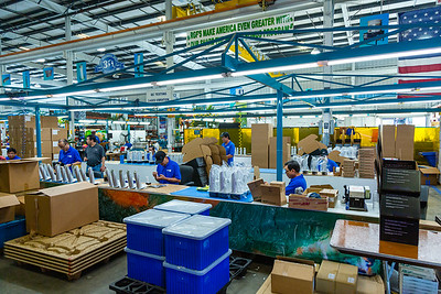 Technicians at RGF Environmental Group assemble Reme-Halo residential air purifiers at the RGF manufacturing plant in Riviera Beach on Friday, March 27, 2020. Since the global coronavirus outbreak, their sales are up 500 percent, and they have added a third shift in their Riviera Beach factory. [JOSEPH FORZANO/palmbeachpost.com]