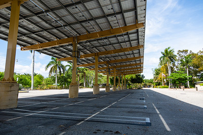The parking lot at the Palm Beach Zoo is empty on  Tuesday, March 31, 2020. The zoo has been closed since March 18 due to the coronavirus pandemic. Zoo officials are unsure when the zoo will be open again. [JOSEPH FORZANO/palmbeachpost.com]