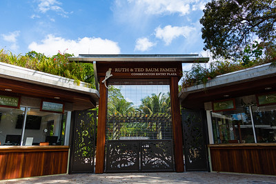 The gates of Palm Beach Zoo are closed on Tuesday, March 31, 2020. The zoo has been closed since March 18 due to the coronavirus pandemic. Zoo officials are unsure when the zoo will be open again. [JOSEPH FORZANO/palmbeachpost.com]
