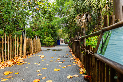 The paths that lead through Palm Beach Zoo in West Palm Beach are empty of visitors on Monday, April 6, 2020. The zoo has been closed since March 18 due to the coronavirus outbreak. [JOSEPH FORZANO/palmbeachpost.com]