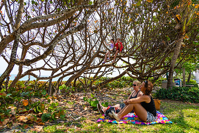 Katherine Blomeke (left) and Suzanne Kovi of the Acreage enjoy an afternoon picnic under the sea grape trees near the beach in Jupiter while their kids Madison Blomeke and Renee Kovi play in a sea grapes, Friday, April 10, 2020. The Jupiter beaches are closed to the public due to the coronavirus pandemic. [JOSEPH FORZANO/palmbeachpost.com]