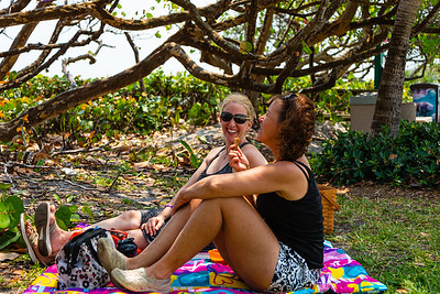 Katherine Blomeke (left) and Suzanne Kovi of the Acreage enjoy an afternoon picnic under a sea grape grove near the beach in Jupiter, Friday, April 10, 2020. The Jupiter beaches are closed to the public due to the coronavirus pandemic. [JOSEPH FORZANO/palmbeachpost.com]