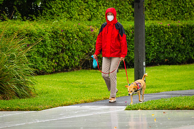 A woman in a rain slicker walks her dog in the rain on South Ocean Blvd. in Palm Beach, Sunday, May 10, 2020. A stalled cool front in Central Florida with an area of low pressure over the western Gulf of Mexico is causing the rain over South Florida. [JOSEPH FORZANO/palmbeachpost.com]