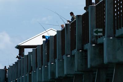 People fish from the Juno Beach Pier in Juno Beach, Monday, June 15, 2020. [JOSEPH FORZANO/palmbeachpost.com]