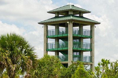 The watch tower in the Wellington Environmental Preserve is closed to visitors due to the coronavirus pandemic, Wellington, Monday, June 22, 2020. [JOSEPH FORZANO/palmbeachpost.com]
