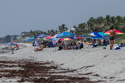 Beachgoers enjoy the sun and sand at Ocean Ridge Hammock Park in Boynton Beach, Tuesday, June 30, 2020. Due to the rise in coronavirus cases, Palm Beach County will close beaches Friday, July 3 to help fight the spread of the disease. [JOSEPH FORZANO/palmbeachpost.com]