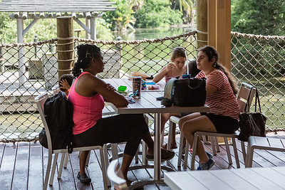A group of friends has a snack at Latitude 26 in Dreher Park Zoo in West Palm Beach, Tuesday, June 30, 2020. The indoor dining area is closed, by outside seating is open The zoo is operating at reduced capacity, and there is a one-way path designated throughout the zoo. [JOSEPH FORZANO/palmbeachpost.com]