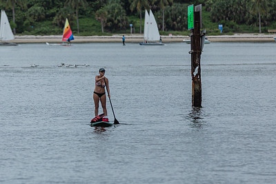 A woman paddle boards towards the beach at Phil Foster Park in Riviera Beach, Tuesday, July 28, 2020. [JOSEPH FORZANO/palmbeachpost.com]