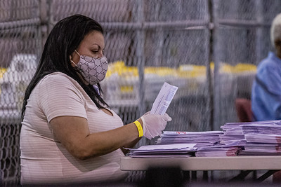 A Supervisor of Elections staff member sorts mail in ballots at the tabulation center in Riviera Beach on Tuesday, August 18, 2020.  [JOSEPH FORZANO/palmbeachpost.com]