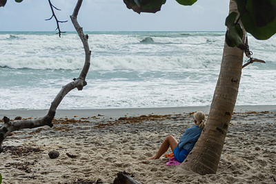 A woman relaxes against a palm tree in Juno Beach while watching the raging waters off the coast, Tuesday, September 22, 2020. The large waves were caused by strong easterly winds. [JOSEPH FORZANO/palmbeachpost.com]