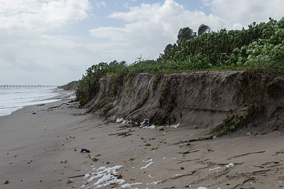 Strong easterly winds off the coast of Juno Beach caused some section of the beach to erode near Beach Access 31, Tuesday, September 22, 2020. [JOSEPH FORZANO/palmbeachpost.com]