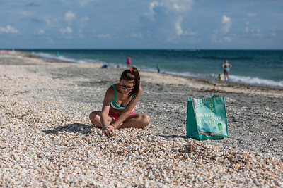 Natasha Tracey of Jupiter sits amongst thousands of sea shells washed up on the beach at Carlin Park in Jupiter, looking for olive shells which are her favorites, Monday, September 28, 2020. [JOSEPH FORZANO/palmbeachpost.com]
