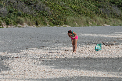 Natasha Tracey of Jupiter hunts for sea shells washed up on the beach at Carlin Park in Jupiter, looking for olive shells which are her favorites, Monday, September 28, 2020. [JOSEPH FORZANO/palmbeachpost.com]