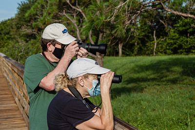 A couple spots a bird in the brush from the boardwalk of Wakodahatchee Wetlands in Delray Beach, Thursday, October 1, 2020. The Wakodahatchee Wetlands boardwalk recently reopened to visitors - it had been shut down since the spring due to the coronavirus pandemic.  [JOSEPH FORZANO/palmbeachpost.com]