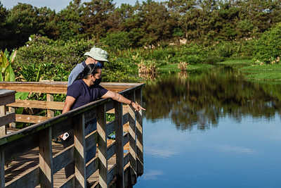 A couple looks down at a bird in the waters of Wakodahatchee Wetlands in Delray Beach, Thursday, October 1, 2020. The Wakodahatchee Wetlands boardwalk recently reopened to visitors - it had been shut down since the spring due to the coronavirus pandemic.  [JOSEPH FORZANO/palmbeachpost.com]