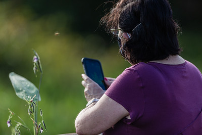 A woman shoots a photograph of a flower with her smartphone from the boardwalk of Wakodahatchee Wetlands in Delray Beach, Thursday, October 1, 2020. The Wakodahatchee Wetlands boardwalk recently reopened to visitors - it had been shut down since the spring due to the coronavirus pandemic.  [JOSEPH FORZANO/palmbeachpost.com]