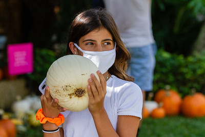 Alivia Murgio of Palm Beach Gardens holds her favorite pumpkin at the The Royal Poinciana Plaza's Pop-Up Patch for Philanthropy benefitting Cancer Alliance of Help and Hope, Saturday, October 10, 2020. 100 percent of the funds raised from the pumpkin patch will be used to help local cancer patients with their rent/mortgage, utilities, car insurance, car payment and health insurance while undergoing treatment. It's estimated that there will be about 5,000 pumpkins over the duration of the event.(JOSEPH FORZANO / THE PALM BEACH DAILY NEWS)