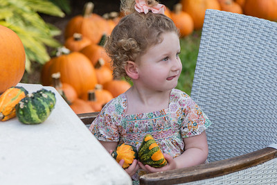 2-year-old Isabella Stern holds a couple of pumpkins while looking for more at the The Royal Poinciana Plaza's Pop-Up Patch for Philanthropy benefitting Cancer Alliance of Help and Hope, Saturday, October 10, 2020. 100 percent of the funds raised from the pumpkin patch will be used to help local cancer patients with their rent/mortgage, utilities, car insurance, car payment and health insurance while undergoing treatment. It's estimated that there will be about 5,000 pumpkins over the duration of the event.(JOSEPH FORZANO / THE PALM BEACH DAILY NEWS)